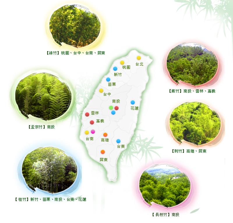 台灣六大經濟竹林分布概況