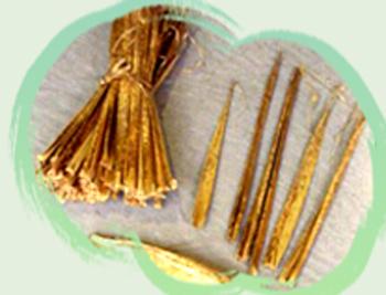 Image-每支竹筍出土的時候,就決定了它的胖瘦