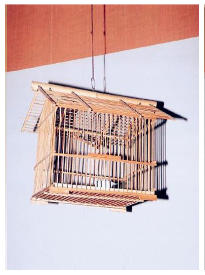 Image-竹籤鳥籠
